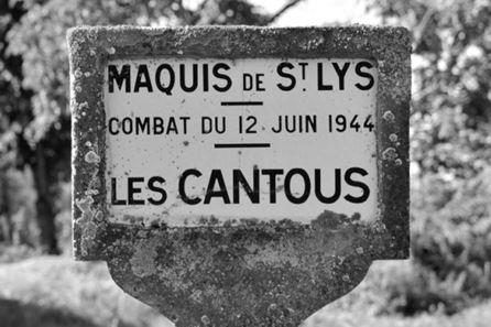 maquis-7