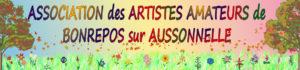 Artistes amateurs 2013 1122x262